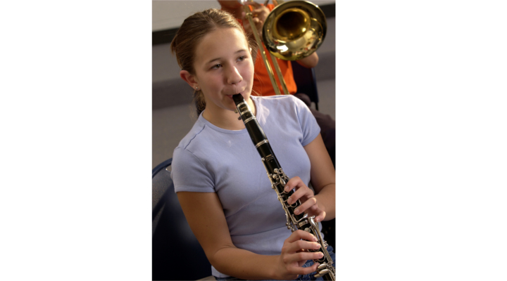 clarinet lesson plan Over 200 lesson plans for music teachers  will learn how to shape their embouchure and blow into their instrument to produce a characteristic tone on the clarinet.